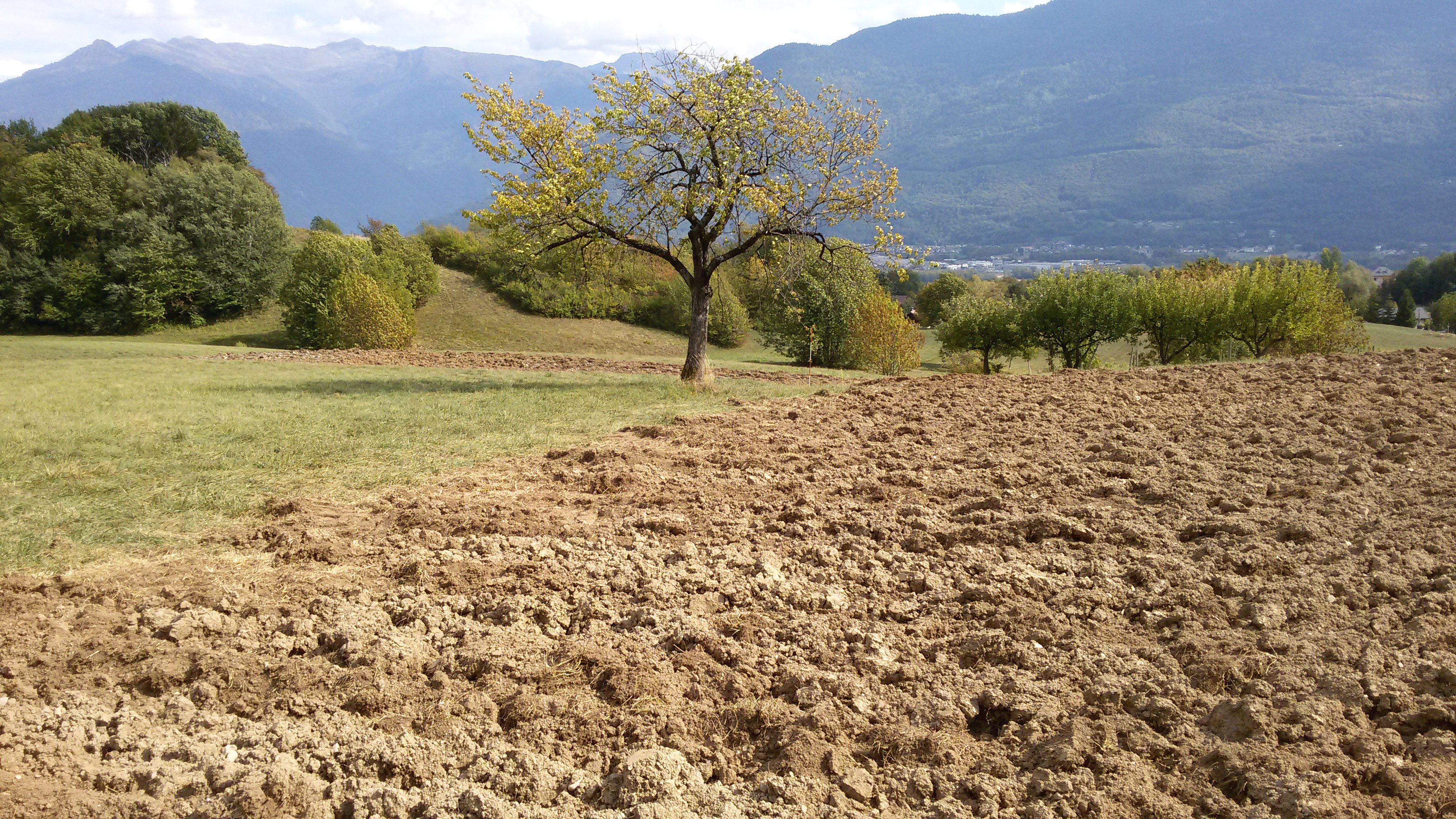 Le terrain a été labouré